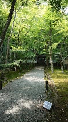 京都2日目5.jpg