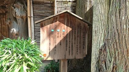 京都2日目9.jpg