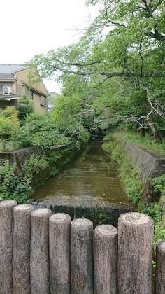京都2日目橋.jpg