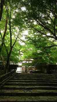 京都3-27.jpg