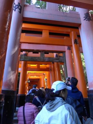 伏見稲荷3.jpg