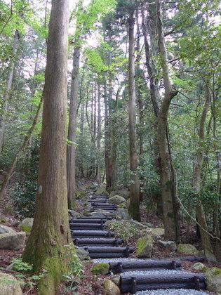 岡田庭園8.jpg