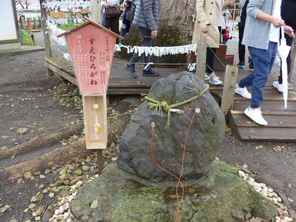 平野神社12.jpg