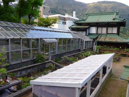 庭園11.jpg