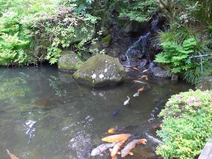 庭園13.jpg