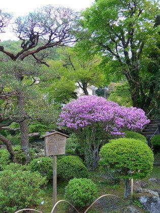 庭園5.jpg
