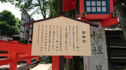 松尾3.jpg