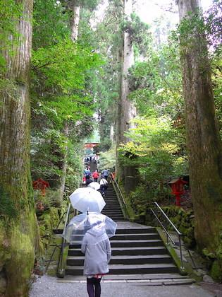 箱根神社3.jpg