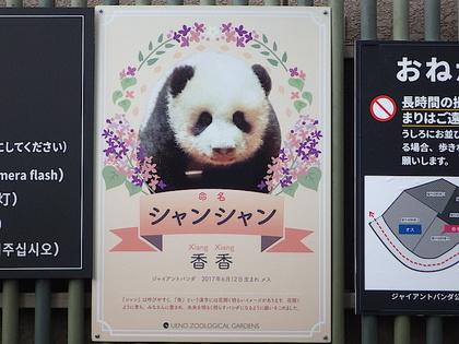 上野4.jpg
