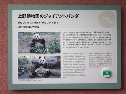 上野5.jpg