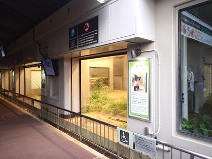 上野8.jpg
