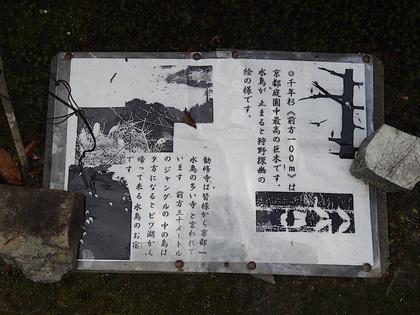 勧修寺14-1.jpg