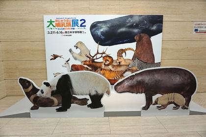 大哺乳類展.jpg