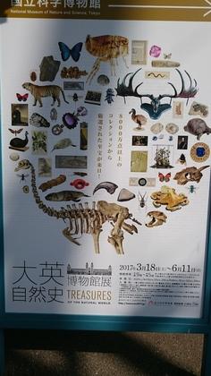 大英自然史博物館展.jpg