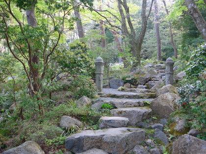 岡田庭園1.jpg
