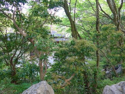 岡田庭園2.jpg