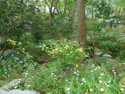 岡田庭園4.jpg