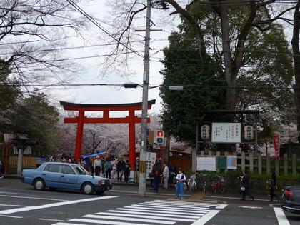 平野神社1.jpg