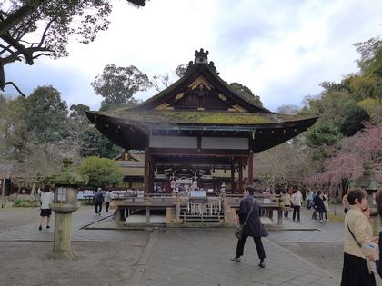 平野神社6.jpg