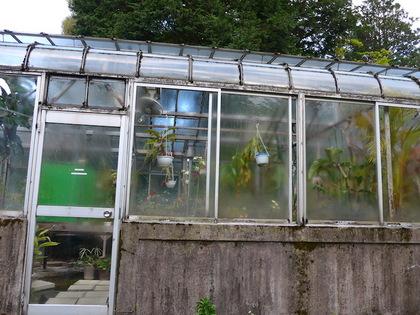 庭園10.jpg
