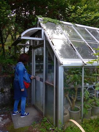 庭園9.jpg