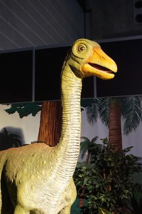 恐竜11.jpg