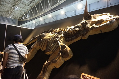 恐竜14レプリカ.jpg