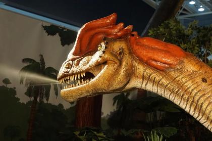恐竜9.jpg