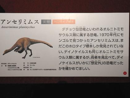恐竜博11.jpg