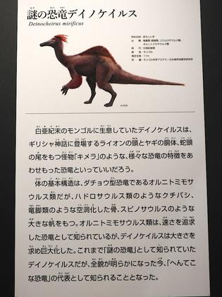 恐竜博7.jpg