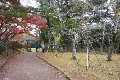 成田山11.jpg