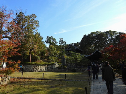 東福寺10.jpg