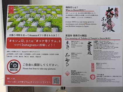 東福寺59.jpg