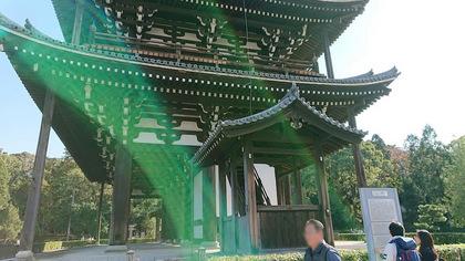 東福寺64.JPG