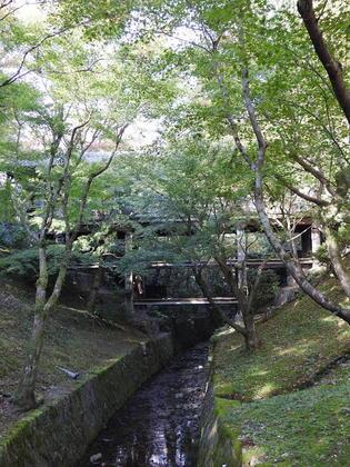 東福寺8.jpg