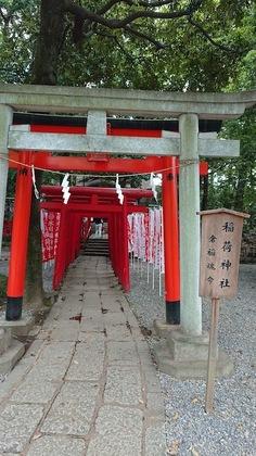 氷川公園11.JPG