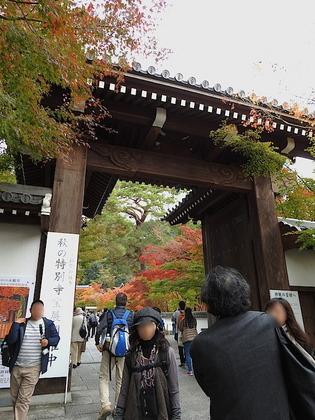 永観堂1.jpg