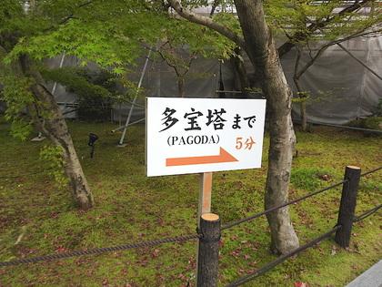 永観堂14.jpg