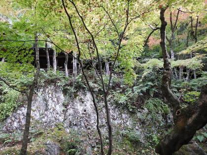 永観堂15.jpg