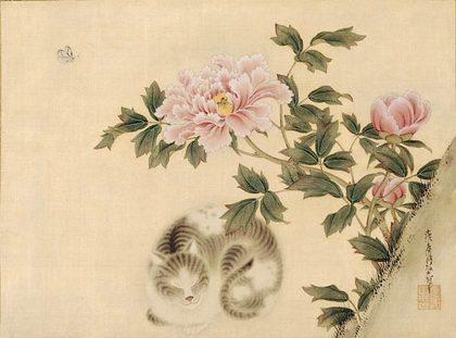相国寺-牡丹猫.jpg